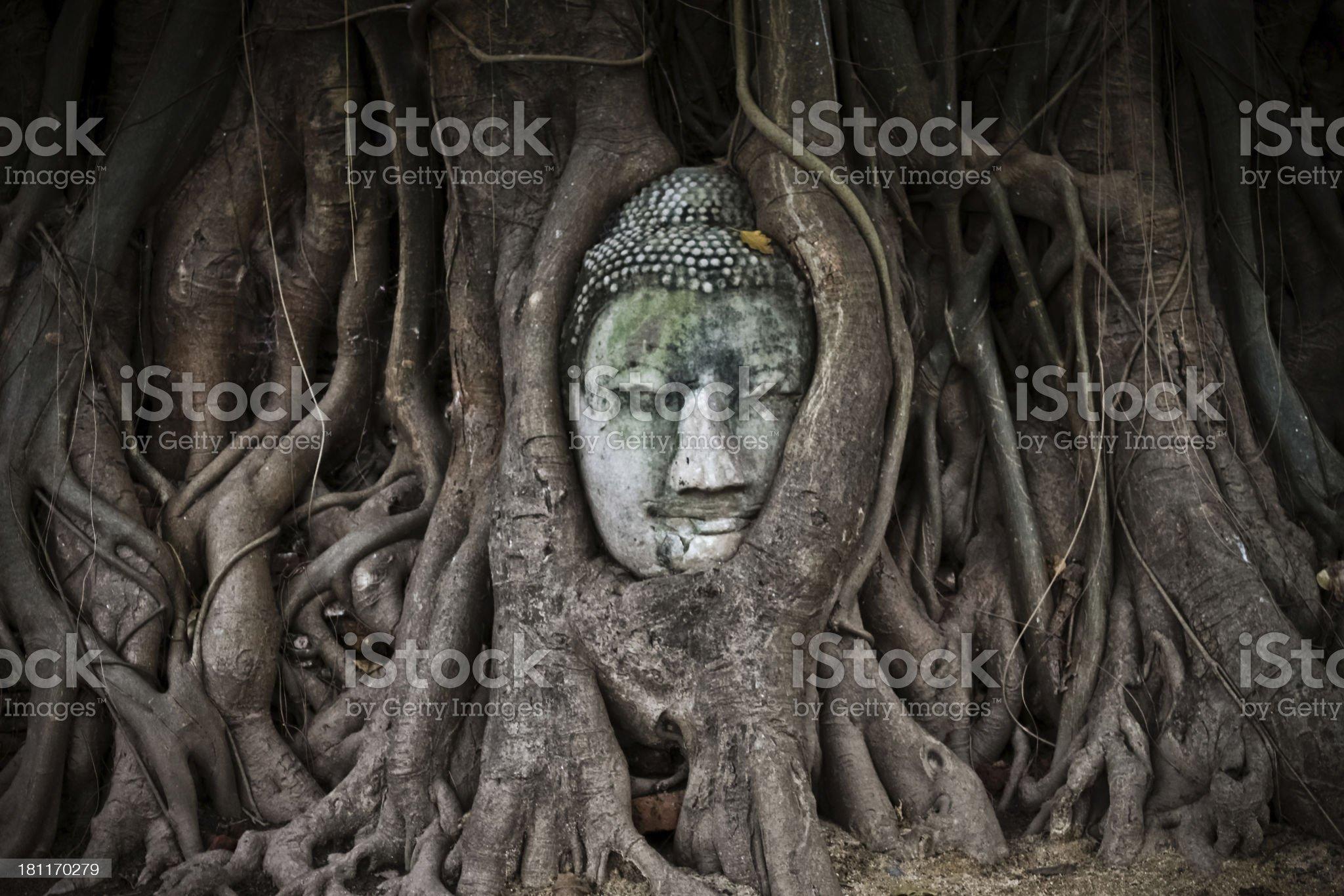 World Heritage the head of  sandstone buddha royalty-free stock photo