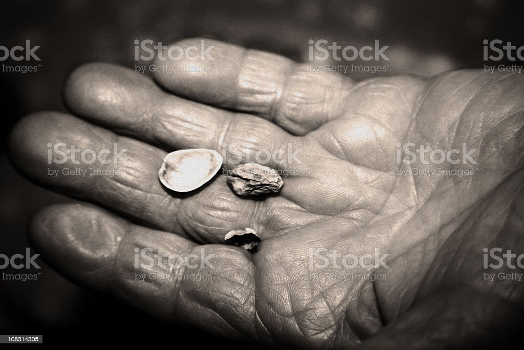 World Hunger - Hand Asking for Food royalty-free stock photo