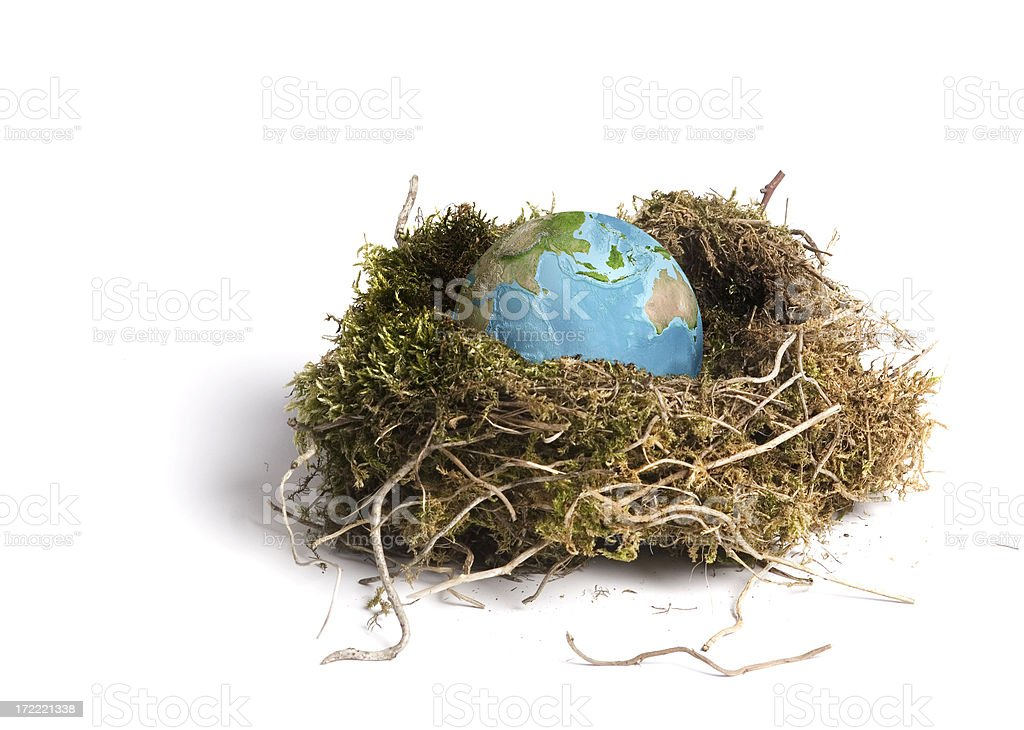 world in a bird's nest royalty-free stock photo