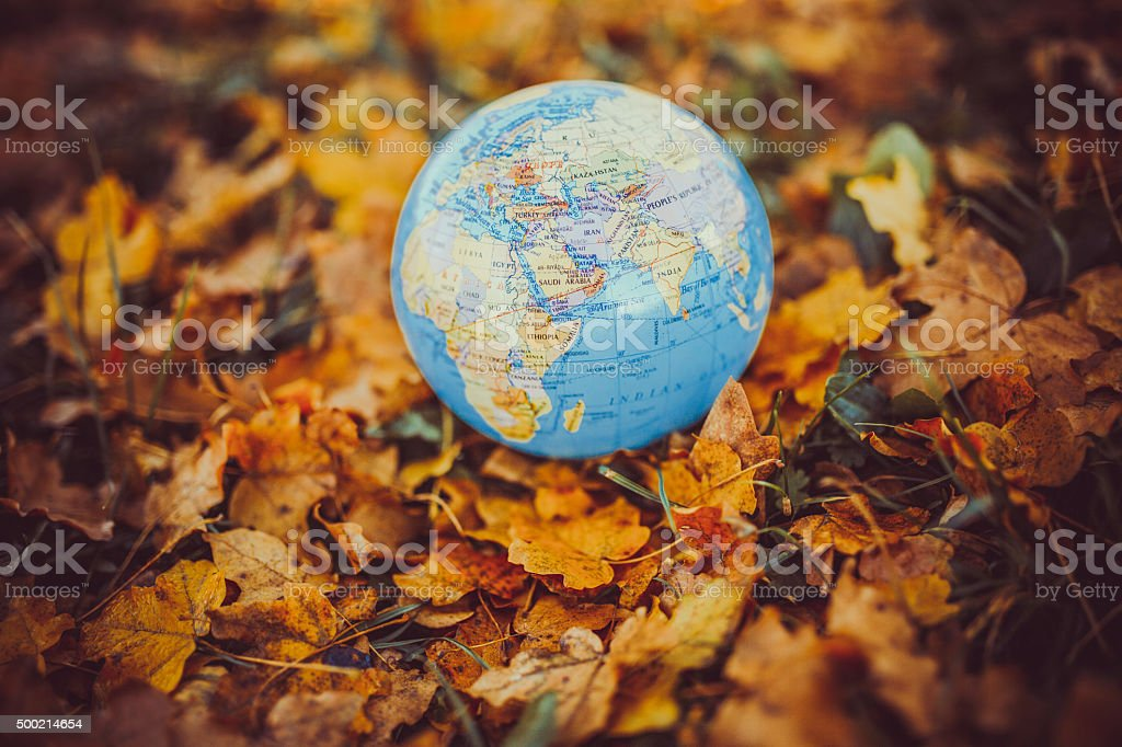 world in the leaves stock photo