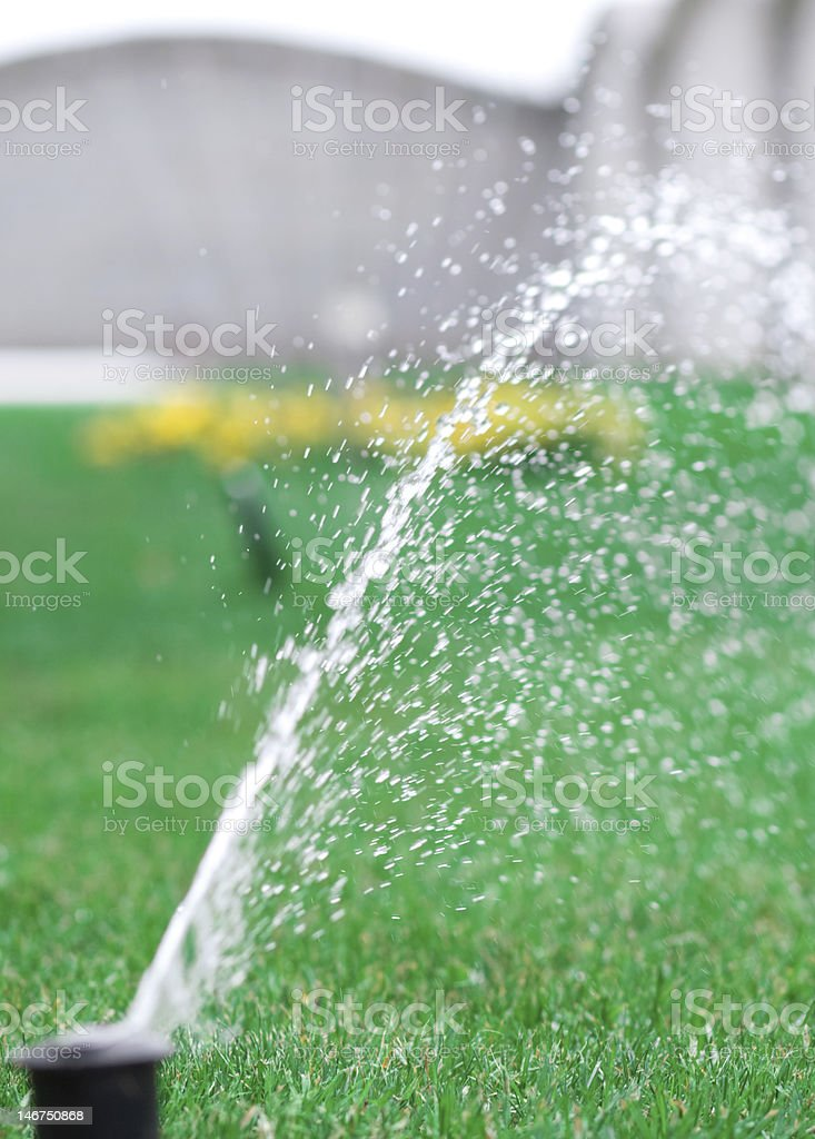 World of Sprinklers stock photo