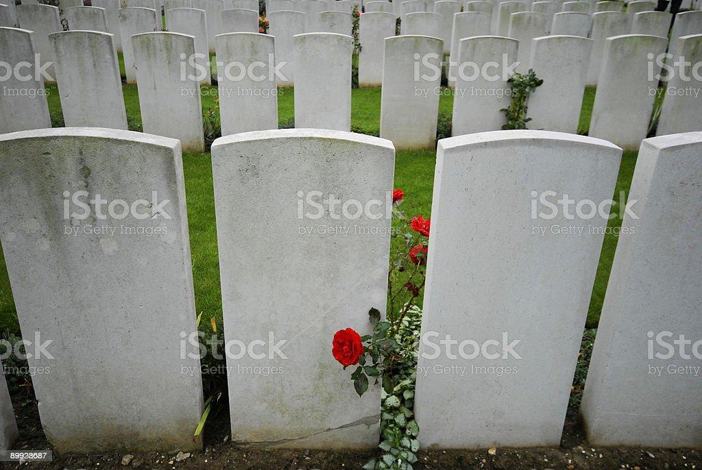World War One royalty-free stock photo