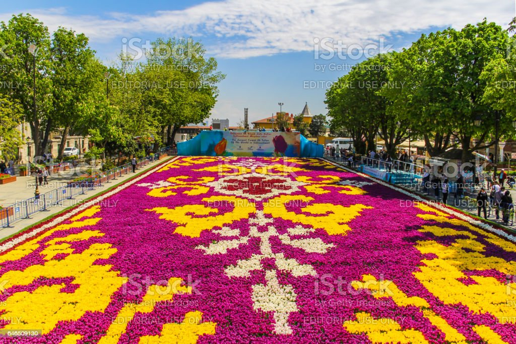 World's largest tulip carpet rolled out in Istanbul stock photo