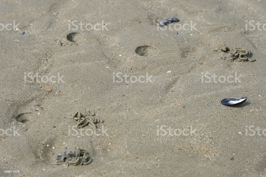 Wormhole on the beach Nieuwpoort Belgium royalty-free stock photo