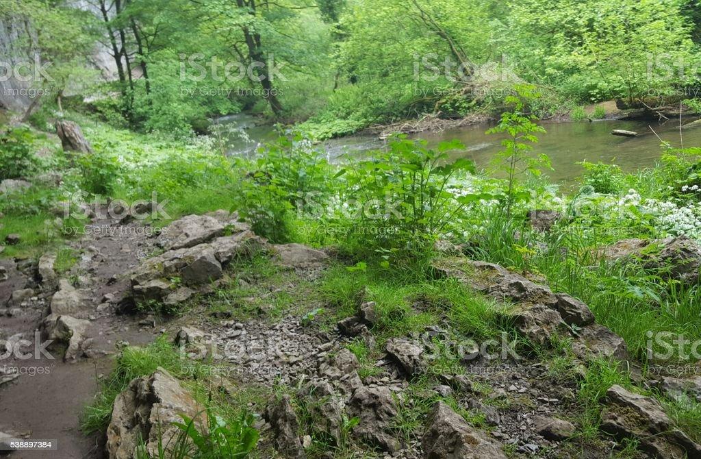 Wormhole Springs stock photo