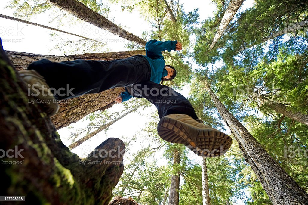 A worms eye view of a hiker with a view of the tall trees stock photo