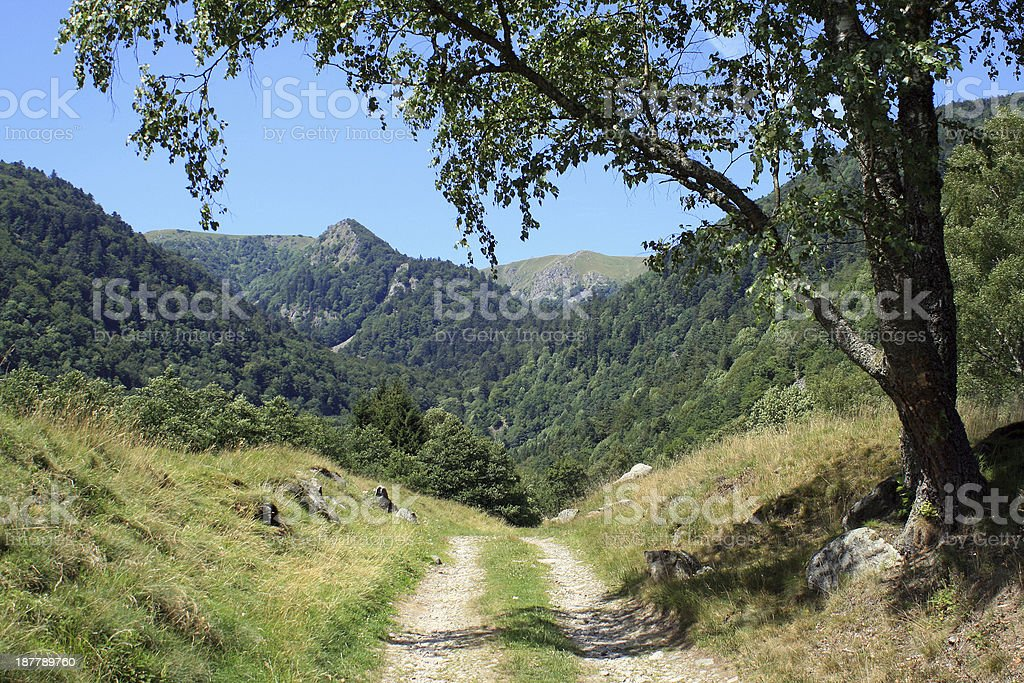 Wormsa valley in Alsace stock photo