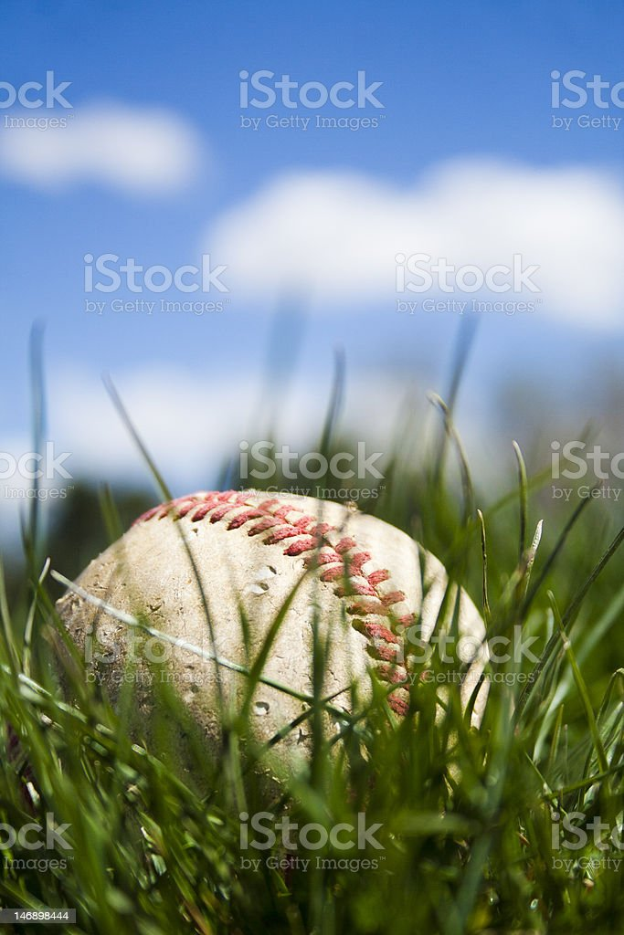 Worn baseball in long grass on sunny day. stock photo