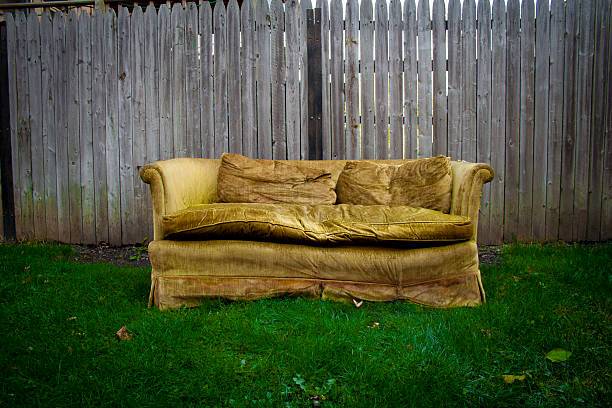 Old Couch Pictures, Images and Stock Photos - iStock
