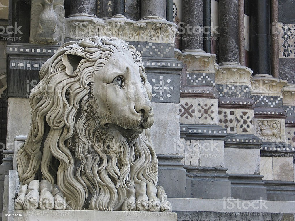 Worried Marble Lion stock photo
