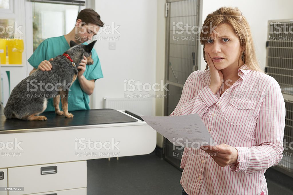 Worried Woman Looking At Bill In Veterinary Surgery stock photo