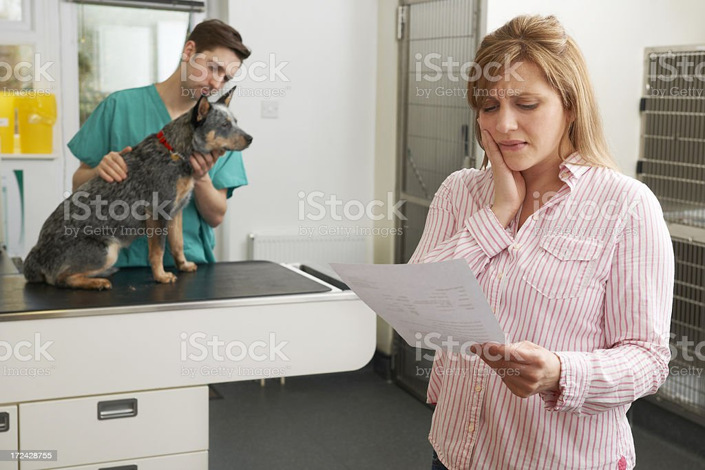 Worried Woman Looking At Bill In Veterinary Surgery royalty-free stock photo