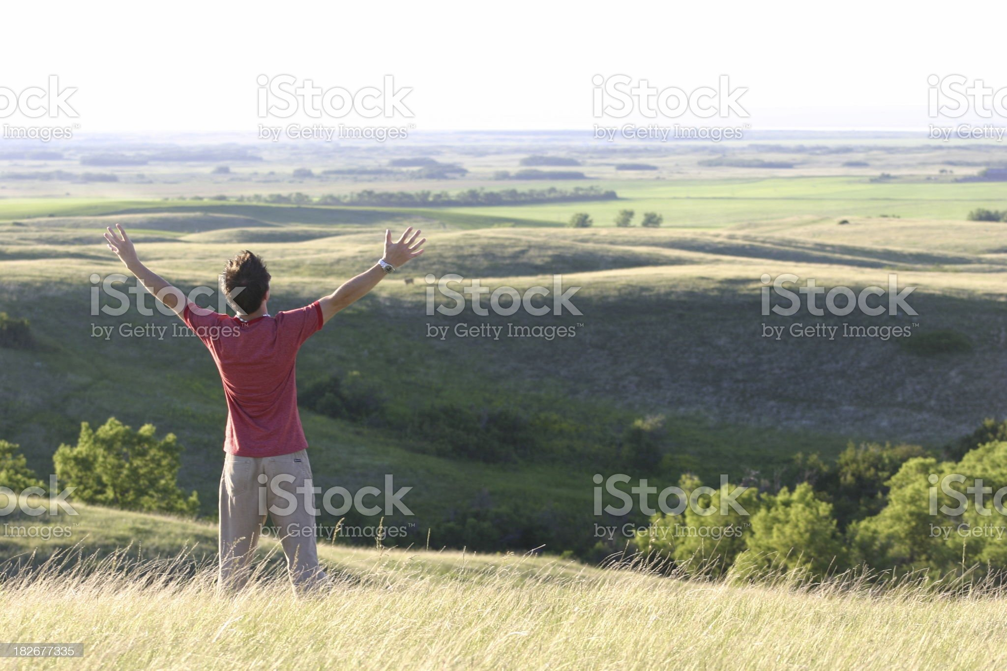 Worship in Nature 5 royalty-free stock photo