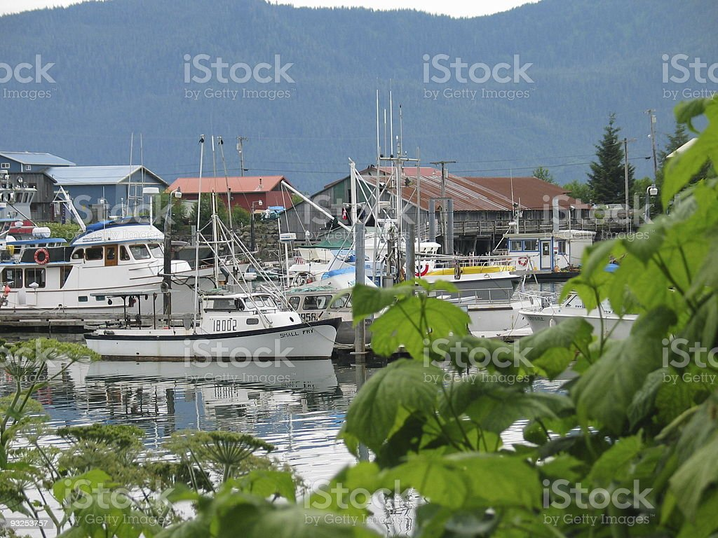 Wrangell Harbor royalty-free stock photo