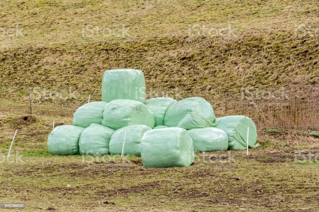 wrapped hay bales stock photo