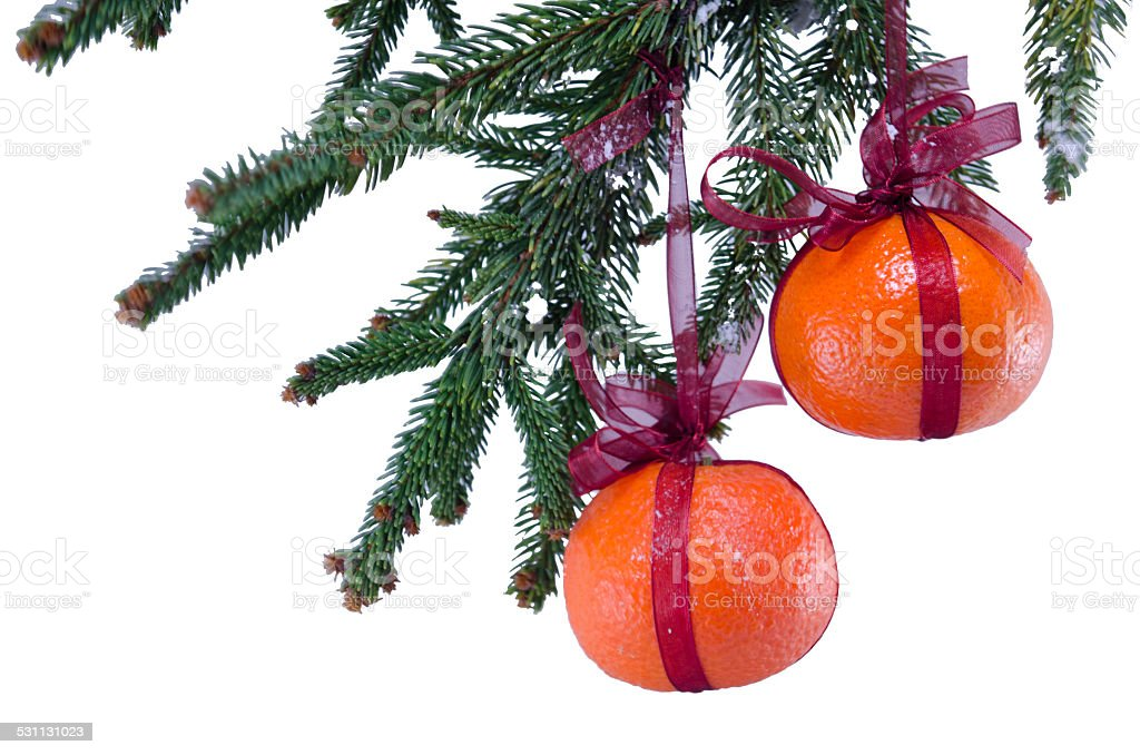 Wrapped oranges hanging from a Christmas tree royalty-free stock photo