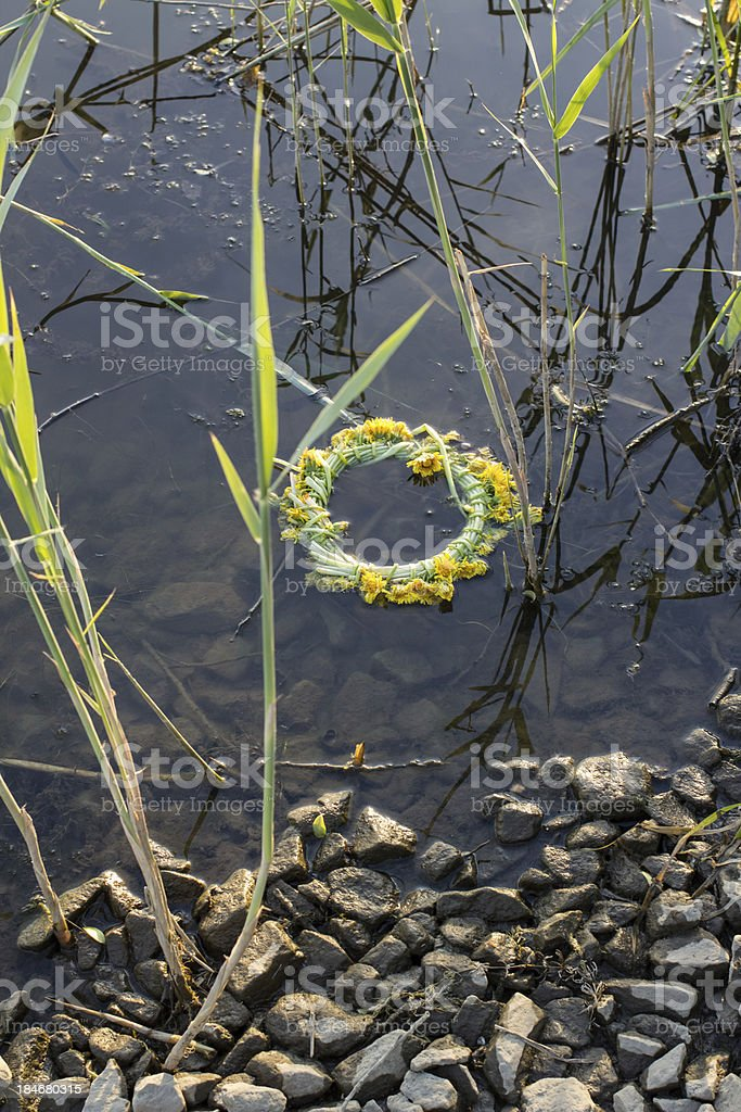 Wreath of dandelions in the water royalty-free stock photo