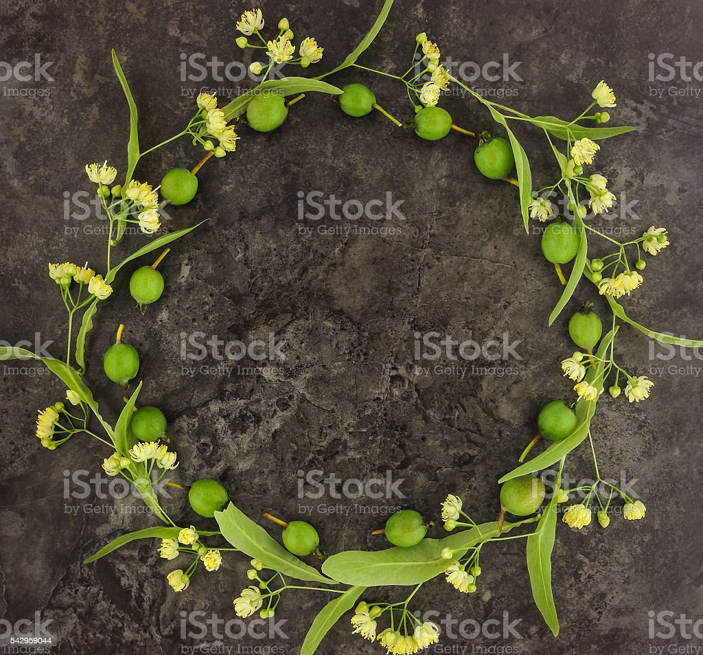 Wreath of flowers and fruits on dark background. Flat lay stock photo