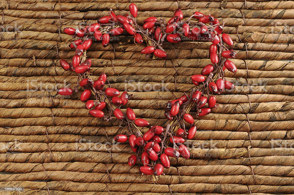 wreath of rose hip and copyspace stock photo