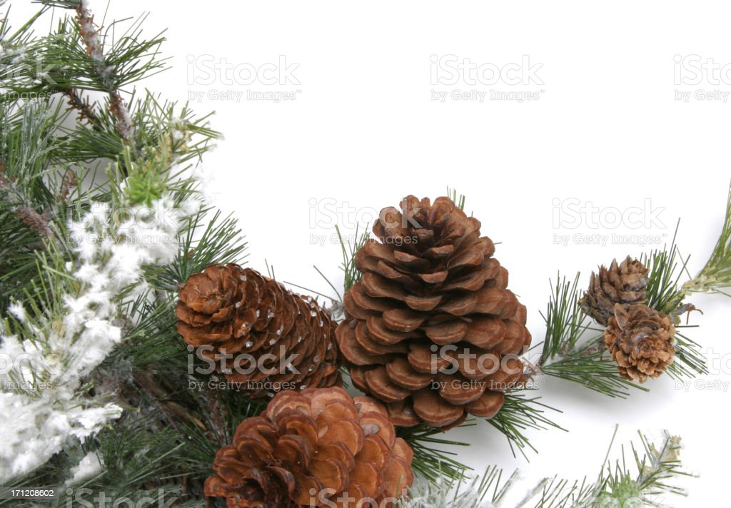 Wreath Series with Pine Cones (on a white background) royalty-free stock photo