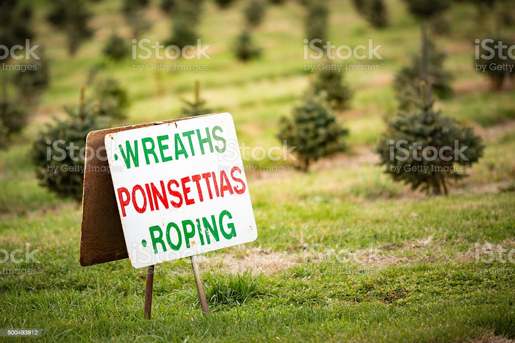 Wreaths Poinsettias Roping Sign stock photo