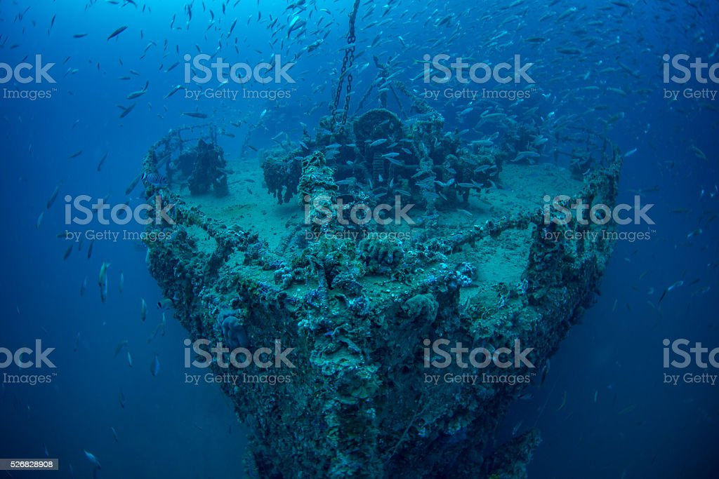Wreck of Steamship Vis stock photo