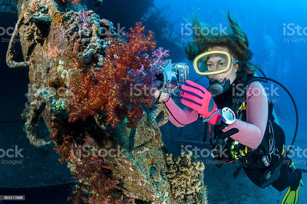 Wreck Photographer stock photo