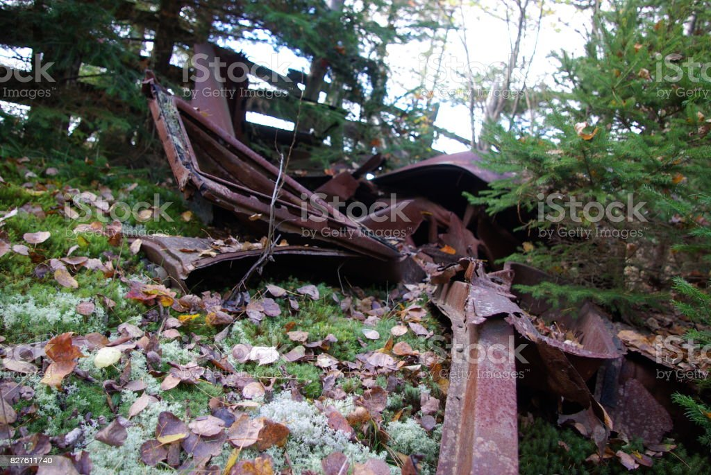 Wrecked car in woods stock photo