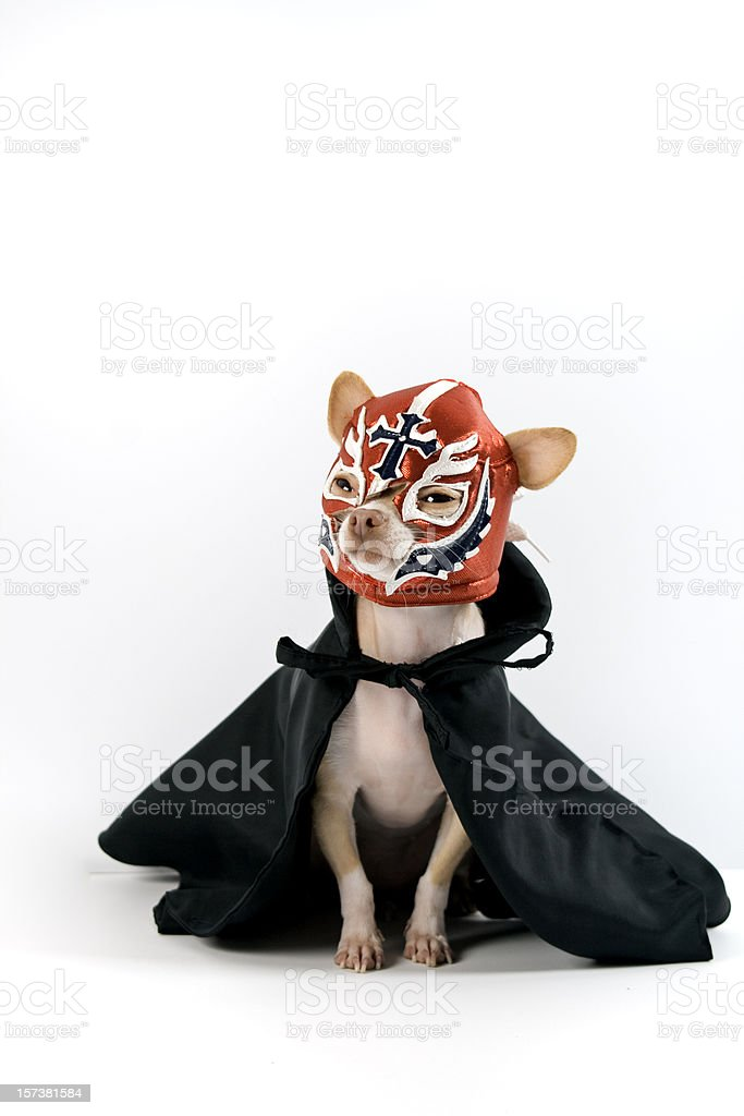 lucha libre stock photo