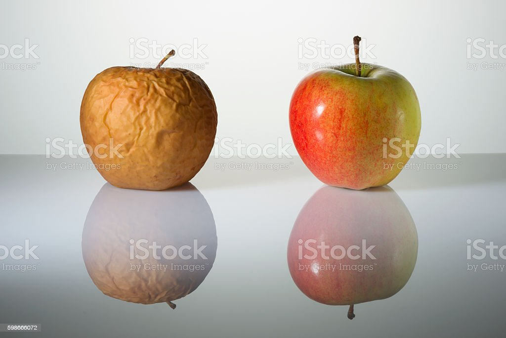 Wrinkled and fresh apples on a surface with reflection stock photo