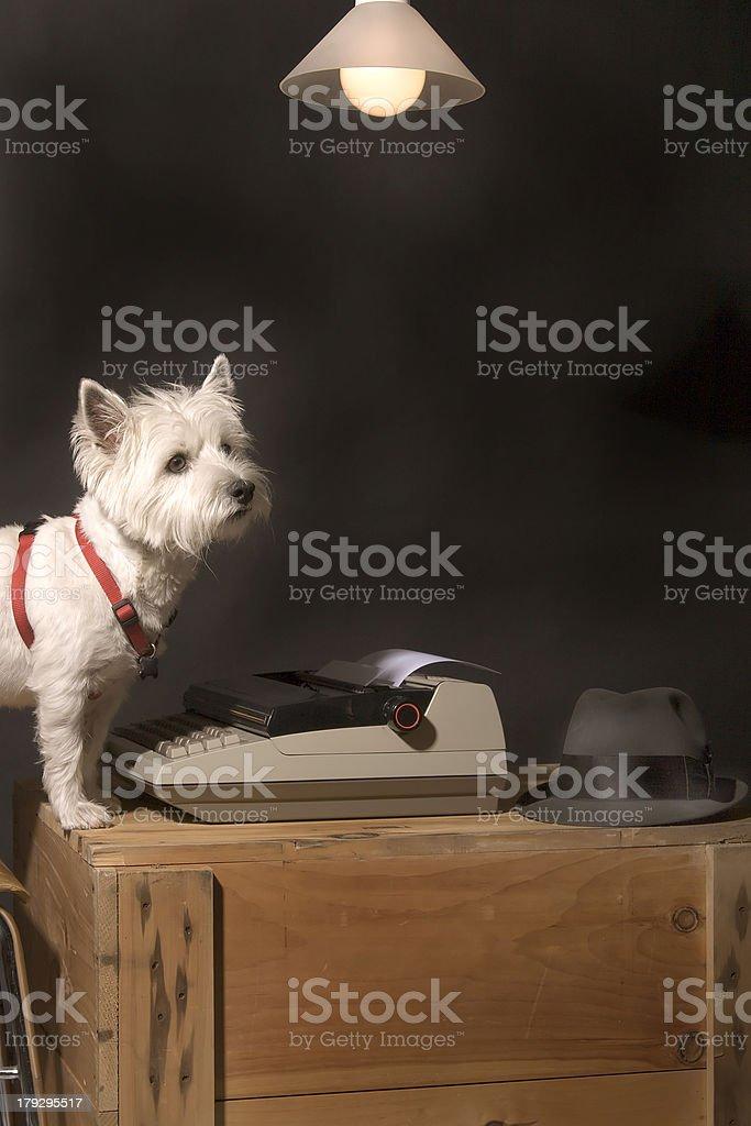 Writing life stock photo