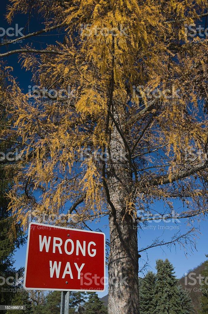Wrong Way (novamente foto royalty-free
