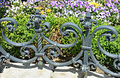 Wrought iron fence in the garden