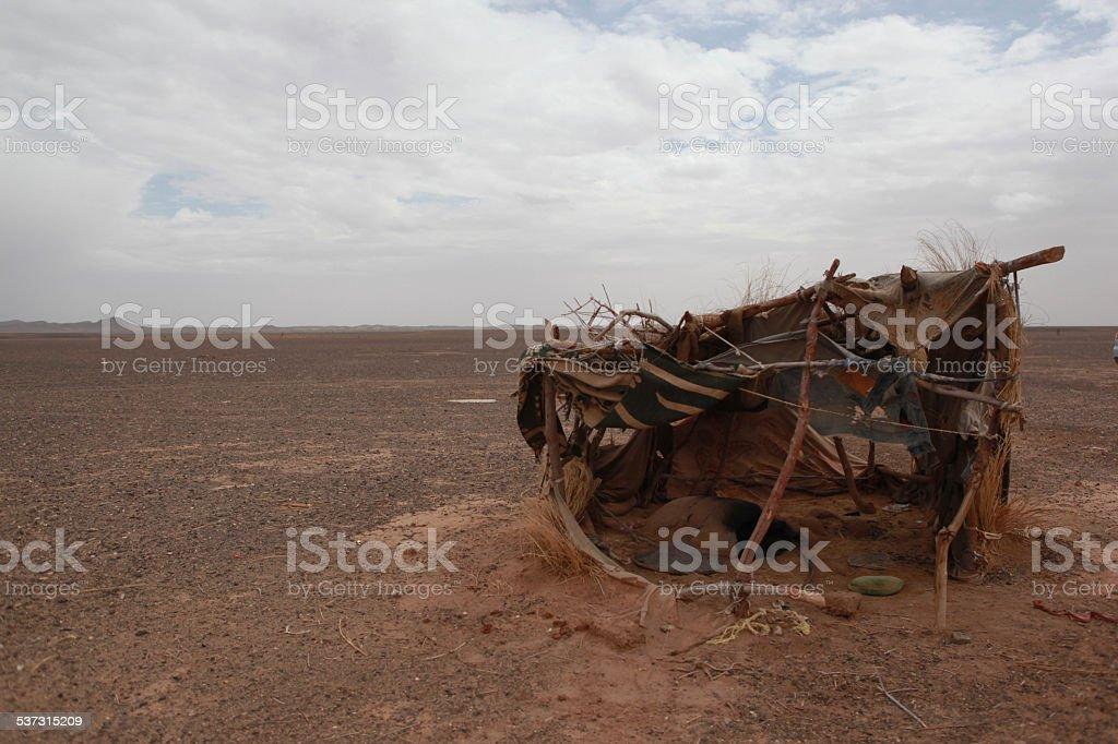 Wüste foto stock royalty-free