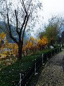 Wu Lin Yuan National Park
