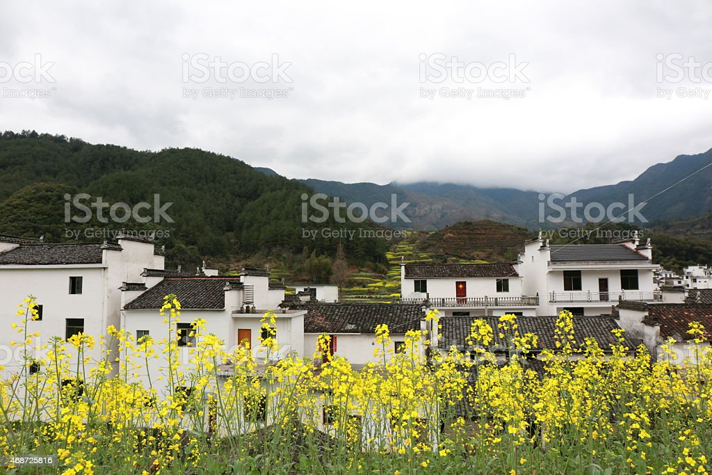 Wuyuan landscape in China at spring stock photo
