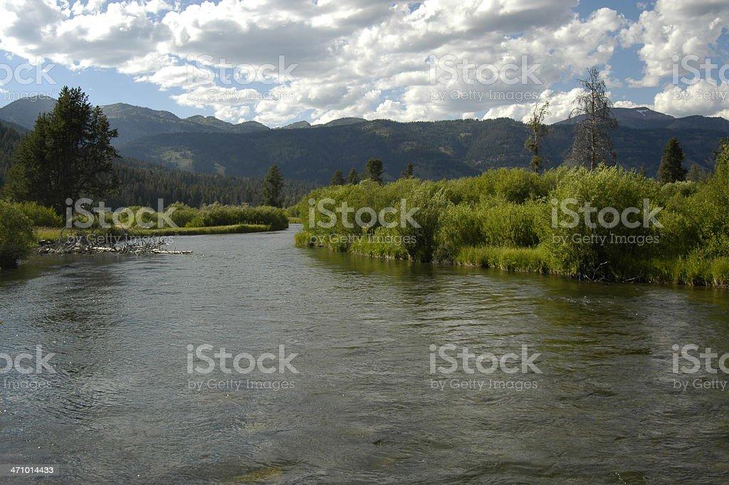 wyoming creek royalty-free stock photo