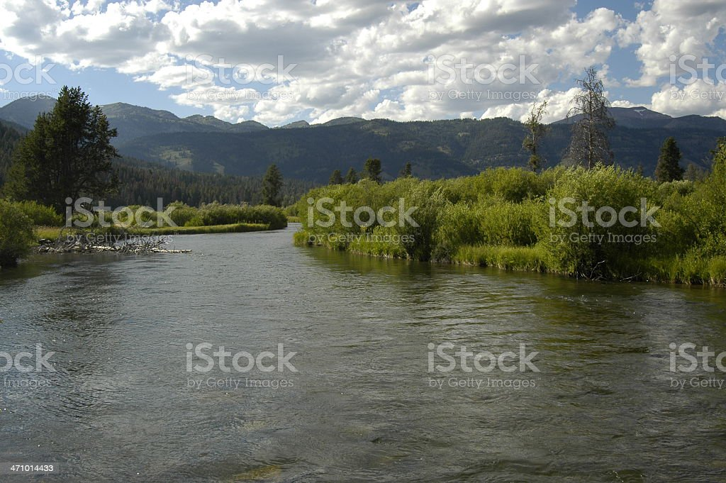 wyoming creek stock photo
