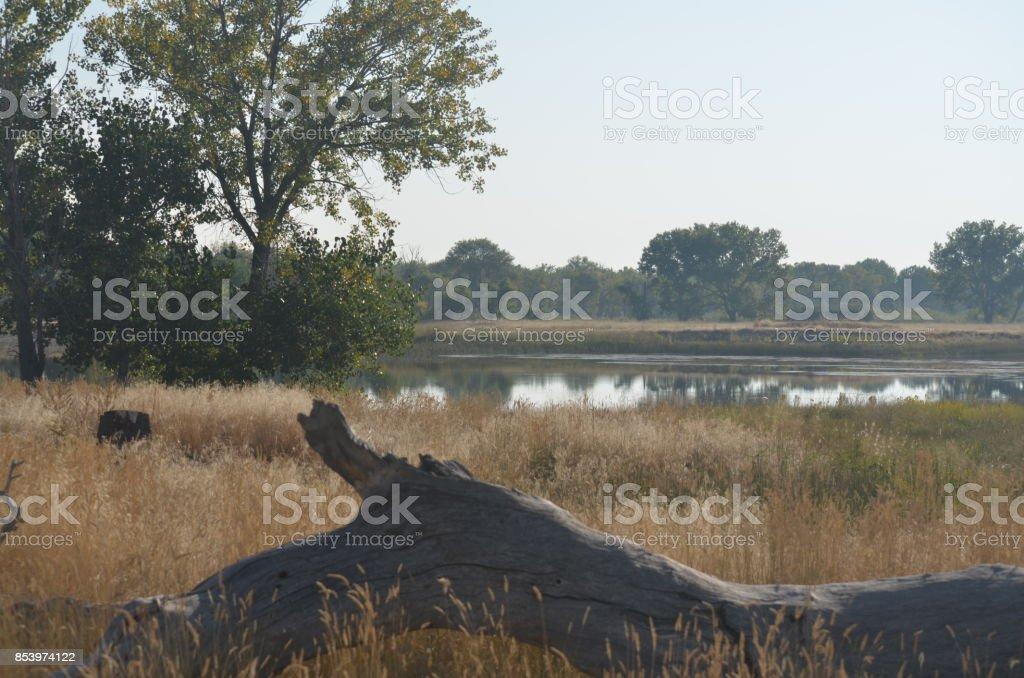 Wyoming Landscape 54 stock photo