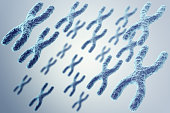 X-chromosomes on grey background, scientific and biology concept. 3d
