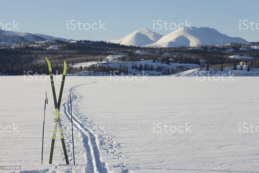 X-country ski winter sport concept royalty-free stock photo