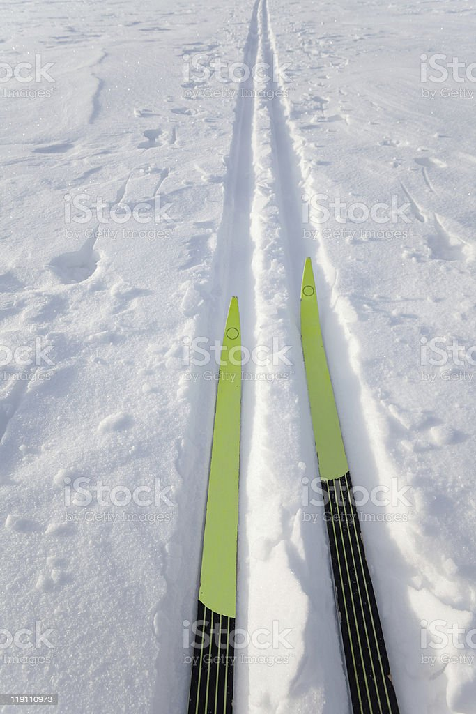 X-County skis in track royalty-free stock photo
