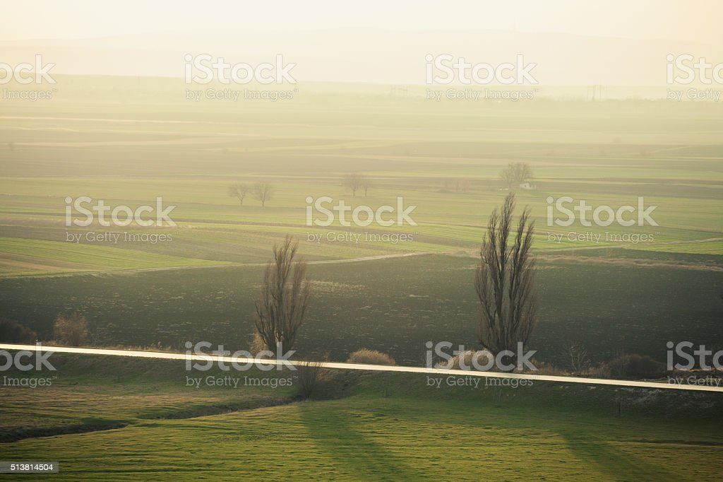 Xeriscaped landscape in Serbia at sunset; stock photo