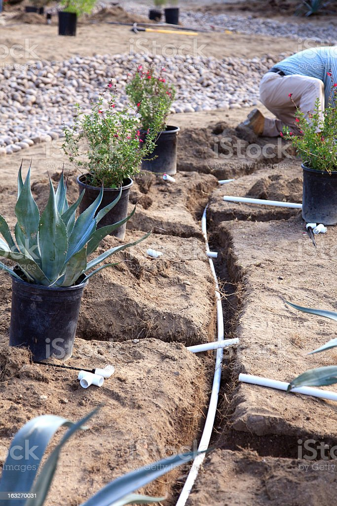 Xeriscaping And Irrigation stock photo
