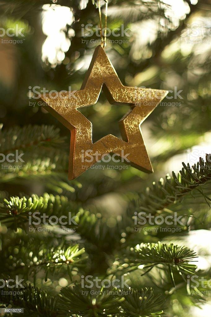 Xmas deco - golden star royalty-free stock photo
