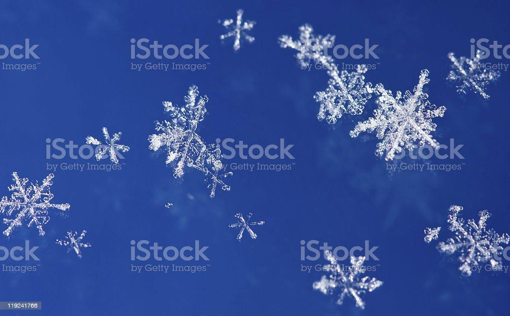 Xmas snowflakes background royalty-free stock photo