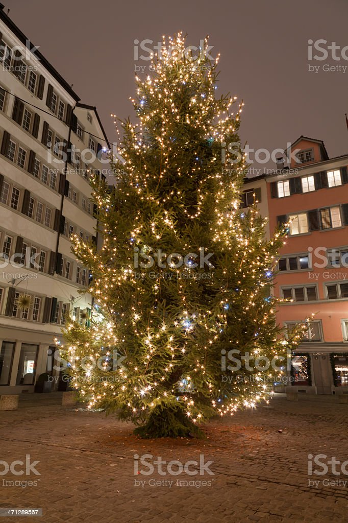 Xmas-Tree, Weinplatz Zurich, still there after New Year Party 2011 royalty-free stock photo