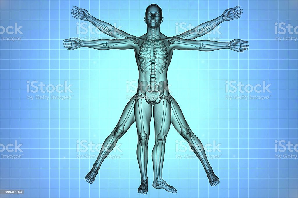 X-ray depiction of the Vitruvian man stock photo