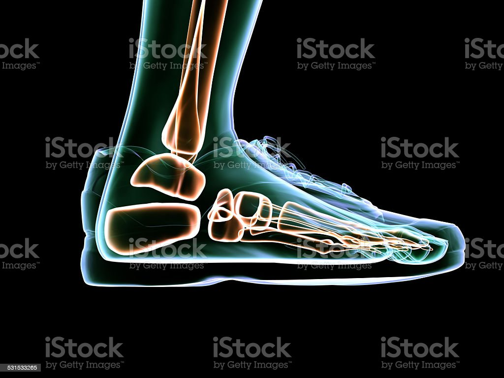 X-Ray Foot Scanning and Shoe Design stock photo