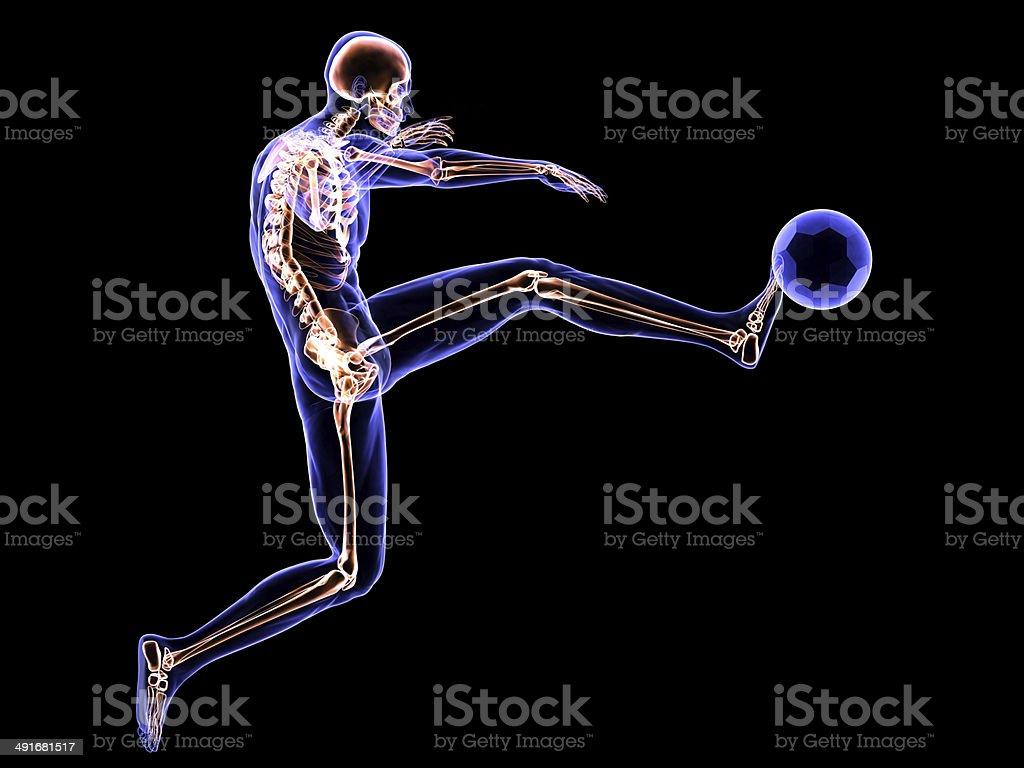 X-Ray Football Player stock photo